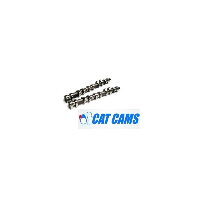 Kit Moteur CLIO 2 GR.N